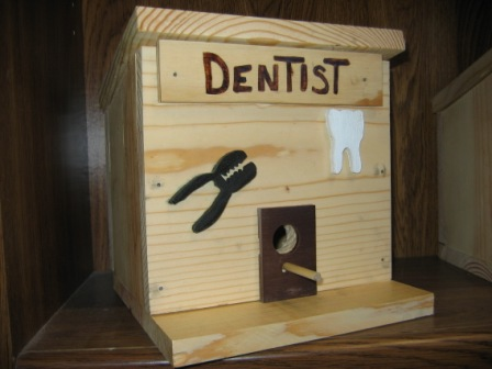 Bird House Dentist